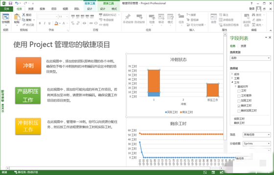 Microsoft Project2010破解版截图1